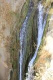 David Stream Water Fall i Ein Gedi, Judea öken i det heliga landet, Israel fotografering för bildbyråer