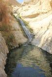 David Stream Water Fall i Ein Gedi, Judea öken i det heliga landet, Israel arkivbild