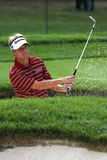 David Toms Royalty Free Stock Photography