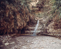 David Waterfall En Gedi Israel. Splashing water from David Waterfall at En Gedi Nature Reserve on the Dead Sea Israel Stock Image
