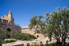 David wierza. Stary miasto Jerozolima. Obrazy Stock