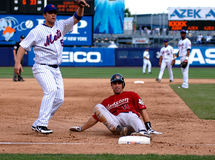 David Wright and Brad Ausmus Stock Image