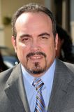 David Zayas Royalty Free Stock Photos