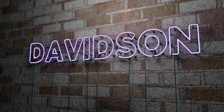 DAVIDSON - Glowing Neon Sign on stonework wall - 3D rendered royalty free stock illustration. Can be used for online banner ads and direct mailers Royalty Free Stock Images