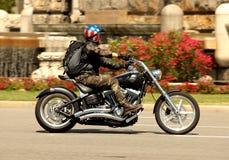 davidson harley摩托车 免版税库存图片