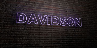 DAVIDSON -Realistic Neon Sign on Brick Wall background - 3D rendered royalty free stock image. Can be used for online banner ads and direct mailers Stock Photography