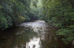 Davidson River in North Carolina Stock Photography