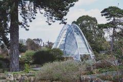 Davies planlade det alpina huset, modern byggnad att ge det perfekta villkoret för alpina växter som lokaliserades i Kew trädgård Arkivfoton