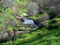 Davis Creek Waterfall Stock Afbeeldingen