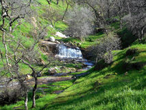 Davis Creek Waterfall. This tranquil waterfall off Davis Creek is located in California`s Central Valley. It`s beauty has been unspoiled as it is a bit of a Stock Images