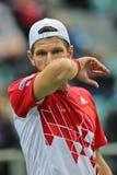 Davis Cup Αυστρία εναντίον της Ρωσίας Στοκ εικόνες με δικαίωμα ελεύθερης χρήσης