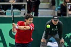 Davis Cup Αυστρία εναντίον της Ρωσίας Στοκ φωτογραφία με δικαίωμα ελεύθερης χρήσης
