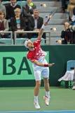 Davis Cup Austria vs. Russia. WIENER NEUSTADT, AUSTRIA - FEBRUARY 10 Juergen Melzer (Austria) beats Igor Kunizin (Russia) in a five set match during the Davis royalty free stock images