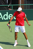 Davis Cup tennis game Ukraine v Austria Stock Images