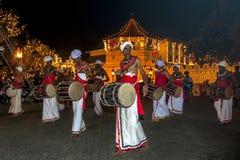 Davul球员在神圣的牙遗物的寺庙前面执行在康提,在Esala Perahera期间的斯里兰卡 库存照片