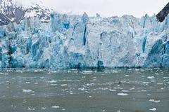 Dawes Glacier. The Dawes Glacier in the Endicott Arm of Alaska Stock Photos