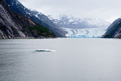 The Dawes Glacier. In the Endicott Arm of Alaska Royalty Free Stock Photography