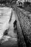 Dawlish storm arkivbilder