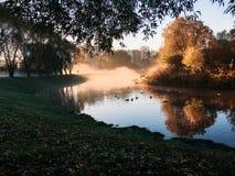 Dawn στο πάρκο φθινοπώρου στοκ εικόνες