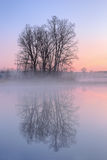 Dawn, λίμνη Jackson Hole Στοκ Φωτογραφίες
