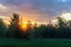 Dawn πέρα από το δάσος Στοκ Φωτογραφίες