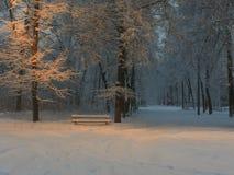Dawn σε ένα δημοτικό πάρκο μετά από χιονοπτώσεις Στοκ εικόνα με δικαίωμα ελεύθερης χρήσης