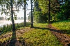 Dawn στον τομέα Στοκ εικόνες με δικαίωμα ελεύθερης χρήσης