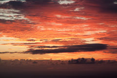 Dawn. Early morning over the sea: dawn Royalty Free Stock Photo