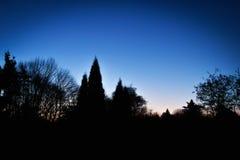 Dawn stock foto