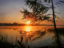 Dawn. Colourful dawn ashore wonderful quiet lake Stock Photography