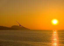 Dawn above the sea Royalty Free Stock Images