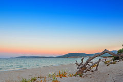 Dawn in Alghero Stock Photography