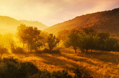 Dawn in Arcadia Stock Image