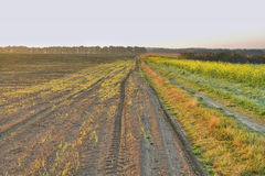 Dawn in the autumn field Stock Photos