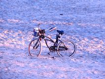 Dawn beach bicycle Royalty Free Stock Photography