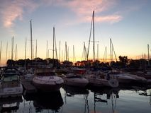 Dawn At Belmont Harbor Images stock