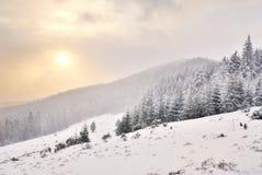 Dawn in berg op sneeuw Royalty-vrije Stock Fotografie