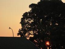 Dawn Breaking stock foto's