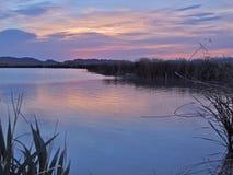 Dawn in Clark County Wetlands Park, Las Vegas, Nevada Stock Photo