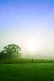 rural dawn Stock Image