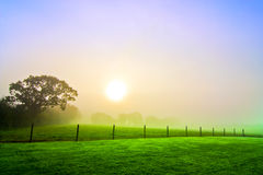 countryside dawn Stock Photo