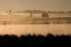 Dawn on the Dam 2. Sunrise over a misty Australian rural dam stock image