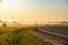 Dawn in de zomer stock fotografie