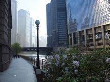 Dawn door de Rivier van Chicago in Chicago stock foto's