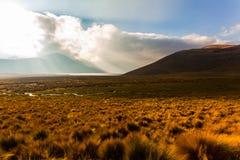 Dawn in the Ecuadorian Andes. Lagoons Ozogoche Stock Photo