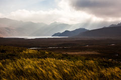 Dawn in the Ecuadorian Andes Royalty Free Stock Photography
