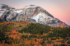 Dawn fall glow in the Wasatch Mountains. Royalty Free Stock Image