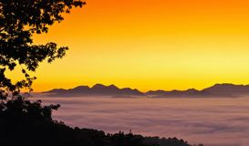 Dawn from fog. Stock Photography