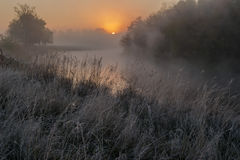 Dawn with fog over the river. Stock Photography