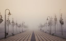 Dawn in the fog. Solitary dawn on foggy streets Stock Photography